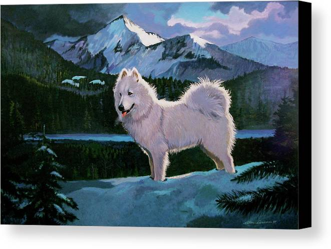 Dogs Samoyed Sled Dog Canvas Print featuring the painting My Dog Blizzard . by Alan Carlson