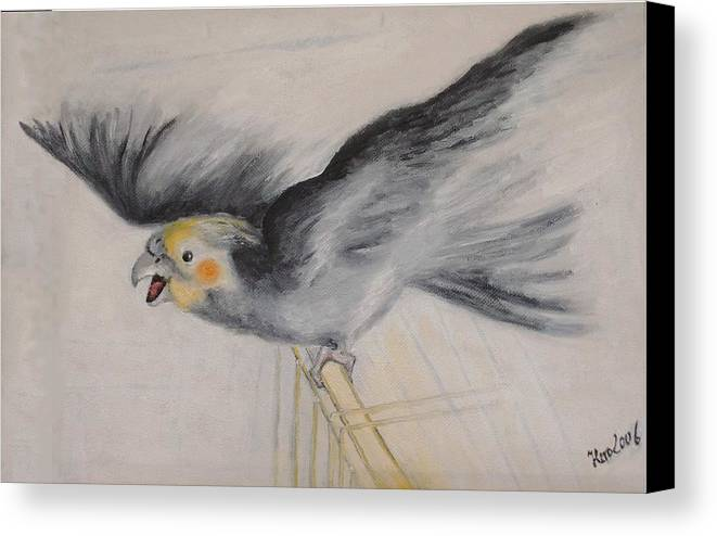 Cockatiel.pet Canvas Print featuring the painting our cockatiel Coco by Helmut Rottler