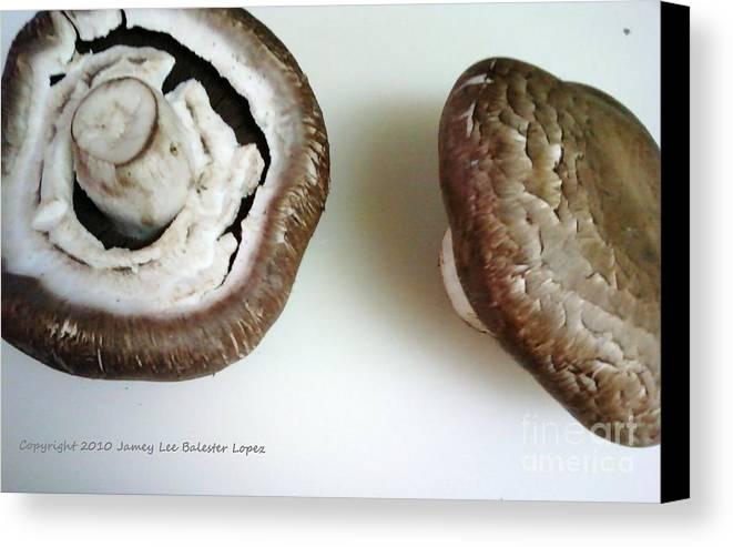 Mushrooms Canvas Print featuring the photograph Portobello Mushrooms 2 by Jamey Balester