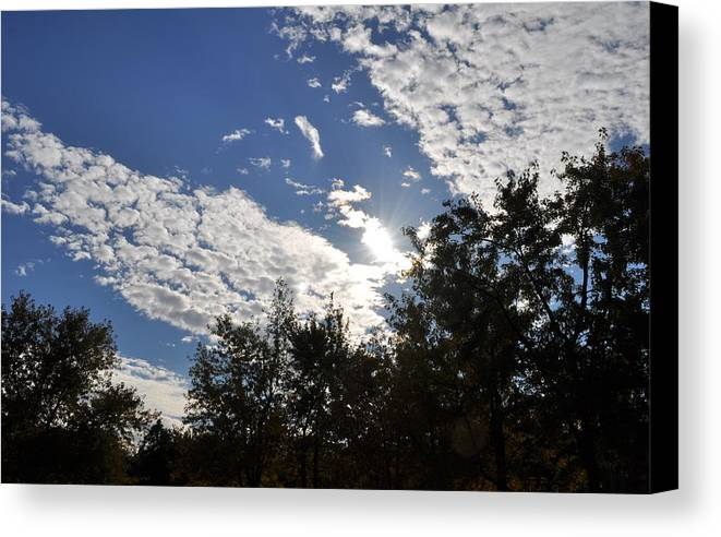 Sunny Sky Canvas Print featuring the photograph Shine And Smile by Georgeta Blanaru