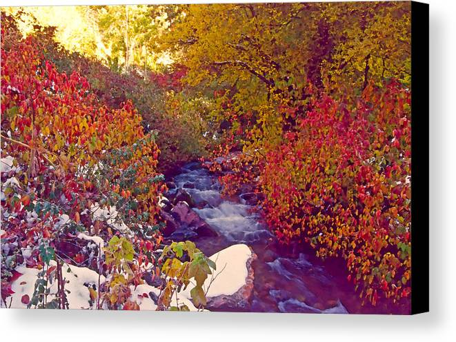 Stream Canvas Print featuring the photograph Stream In Autumn by Steve Ohlsen