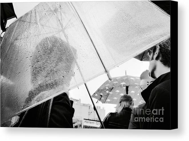 Rain Canvas Print featuring the photograph The Drops Of Silence by Angelo Merluccio