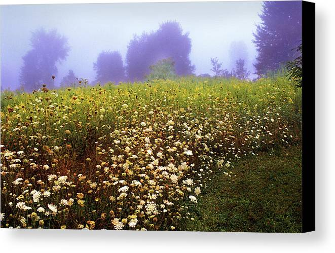 New York State Canvas Print featuring the photograph The Secret Garden by Yuri Lev