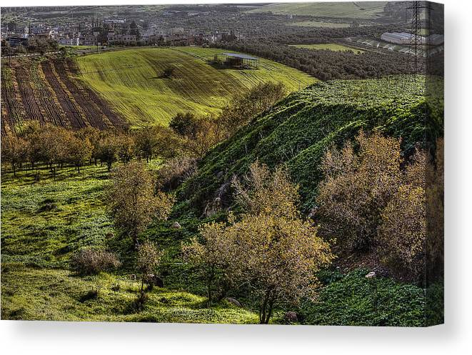 Green Valley Canvas Print featuring the photograph Green Valley by Isaac Silman