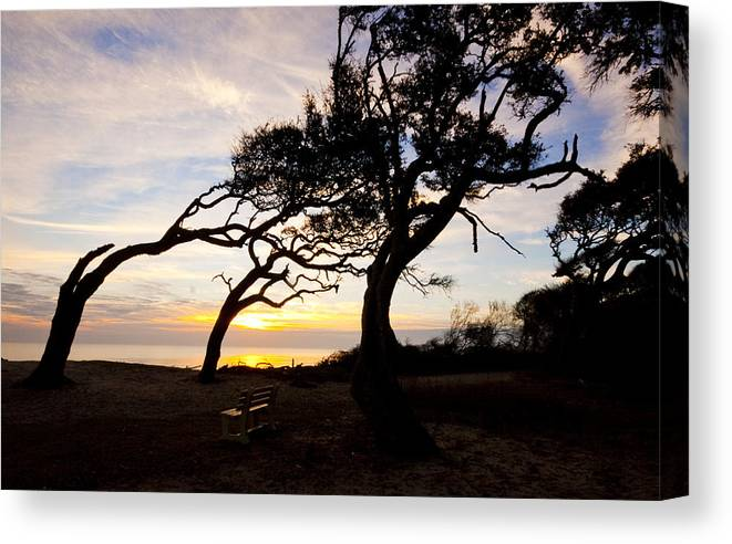 Light Canvas Print featuring the photograph A Place To Watch The Sunrise by Michael Ray