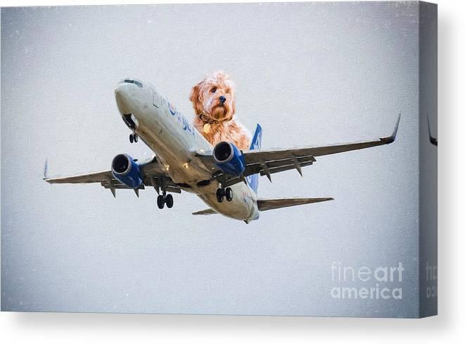 Airline Canvas Print featuring the photograph Dog Pilot by Les Palenik