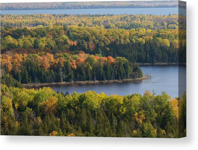 Cup & Saucer Canvas Print featuring the photograph Lakes Of The Woods by David Jenniskens