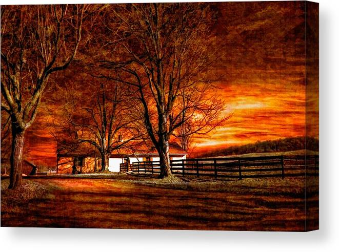 Farm Canvas Print featuring the photograph Limbo II by Steve Harrington