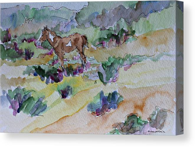 Foal Canvas Print featuring the painting Mimi by Karen McLain