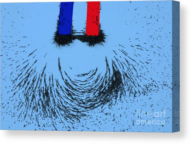 Magnet Canvas Print featuring the photograph Magnetic Attraction by Photo Researchers, Inc.