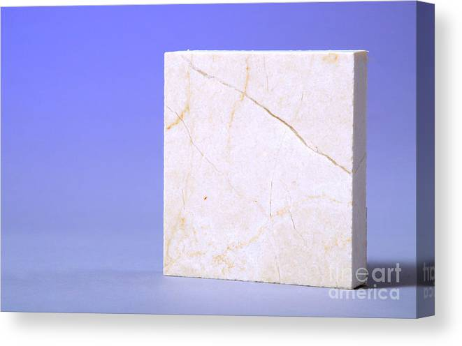 Geology Canvas Print featuring the photograph Crema Marfil Marble by Photo Researchers, Inc.