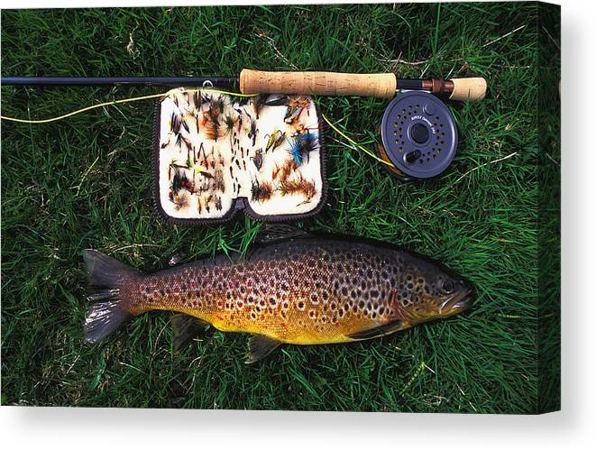 Wild Brown Trout Canvas Print featuring the photograph Wild Brown Trout And Fishing Rod by Axiom Photographic