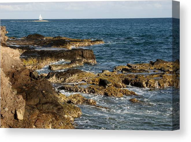 Sailboat Canvas Print featuring the photograph Black Rock Point And Sailboat by Jean Macaluso