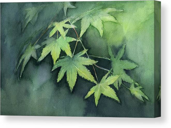Maple Canvas Print featuring the painting Japanese Maple by Olga Shvartsur