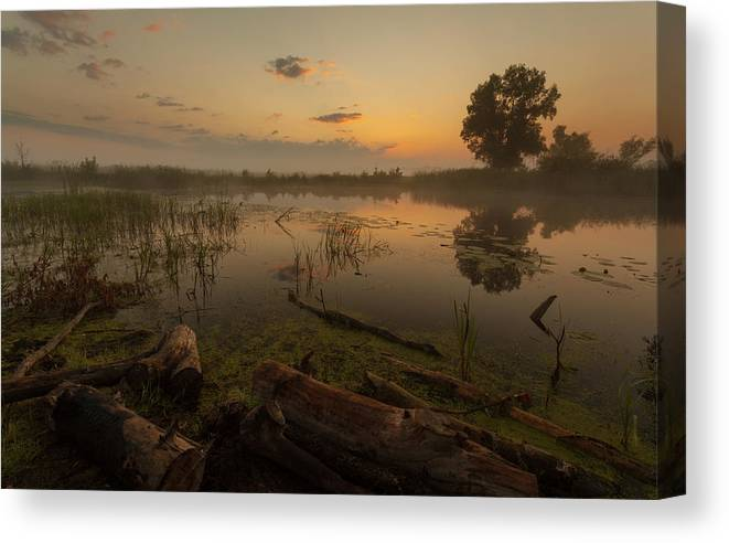 Night Canvas Print featuring the photograph Mysterious Morning Time In Swamp Area. Landscape by Dmytro Kosmenko