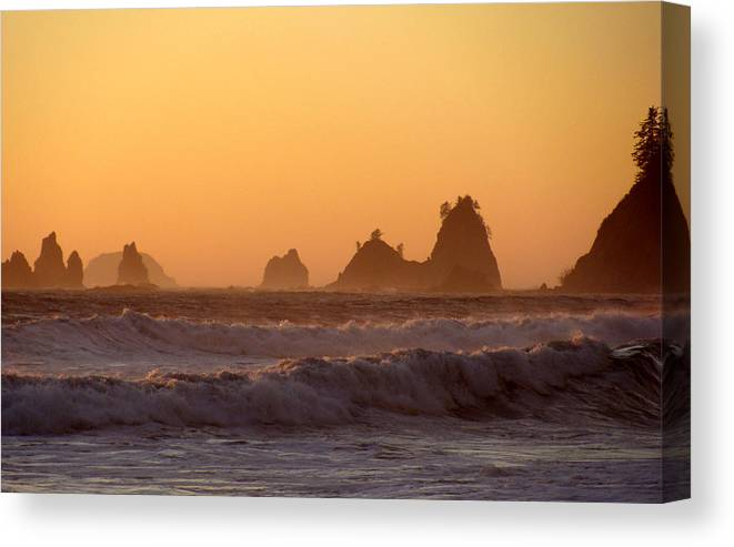 Nautre Canvas Print featuring the photograph Olympic Sunset by Ty Nichols