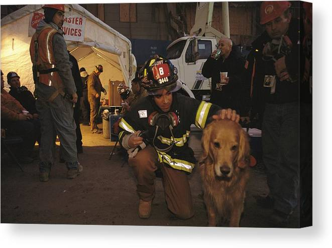 Animals Canvas Print featuring the photograph September 11th Rescue Workers Receive by Ira Block