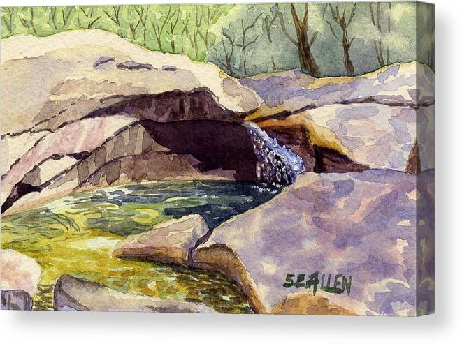 The Basin Canvas Print featuring the painting The Basin by Sharon E Allen