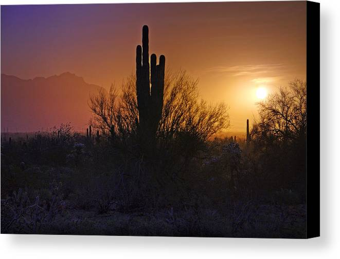 Sunrise Canvas Print featuring the photograph A Sonoran Morning by Saija Lehtonen