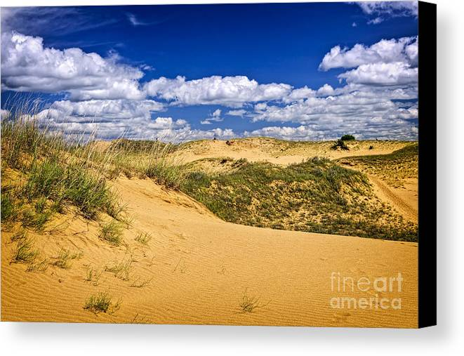 Sand Canvas Print featuring the photograph Desert Landscape In Manitoba by Elena Elisseeva