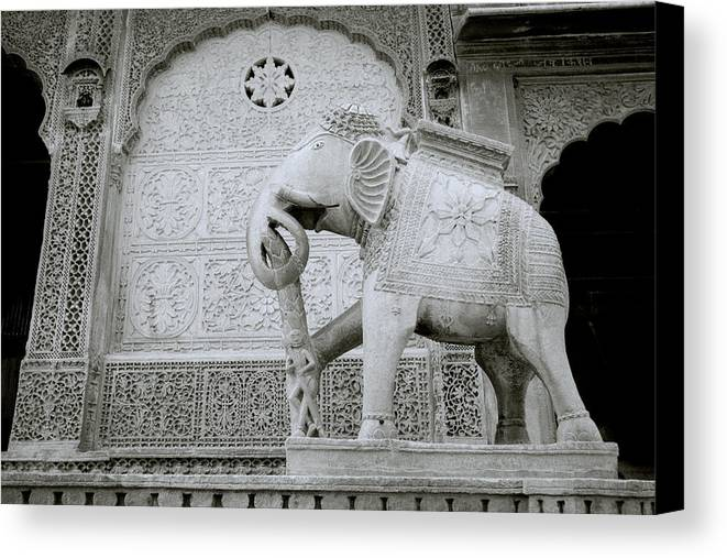 India Canvas Print featuring the photograph The Beautiful Elephant by Shaun Higson