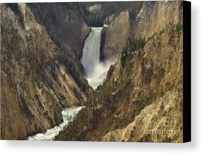 Ynp Canvas Print featuring the photograph Lower Falls Of The Yellowstone by David Burks