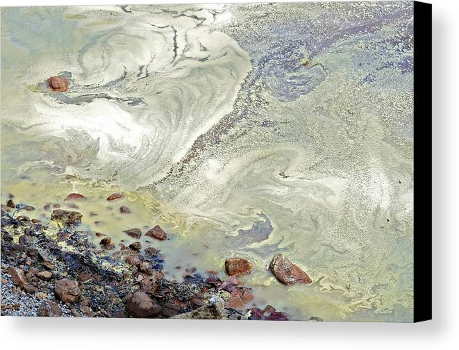 Yellow Canvas Print featuring the photograph Natures Art by Susan Leggett