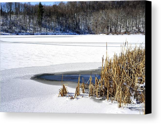 Snow Canvas Print featuring the photograph Snow On Lake by Thomas R Fletcher