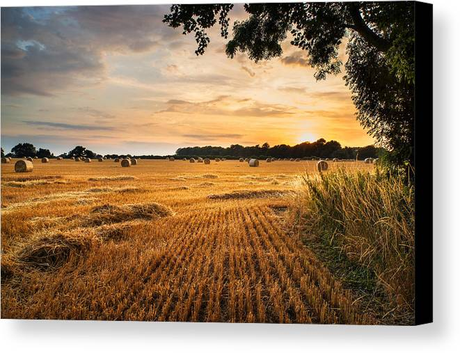 Art Canvas Print featuring the photograph Stunning Summer Landscape Of Hay Bales In Field At Sunset by Matthew Gibson