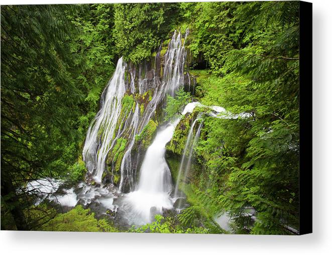 Big Creek Canvas Print featuring the photograph Wa, Gifford Pinchot National Forest by Jamie and Judy Wild