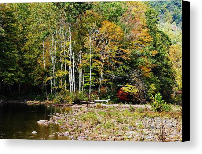 Autumn Canvas Print featuring the photograph Fall Color River by Thomas R Fletcher