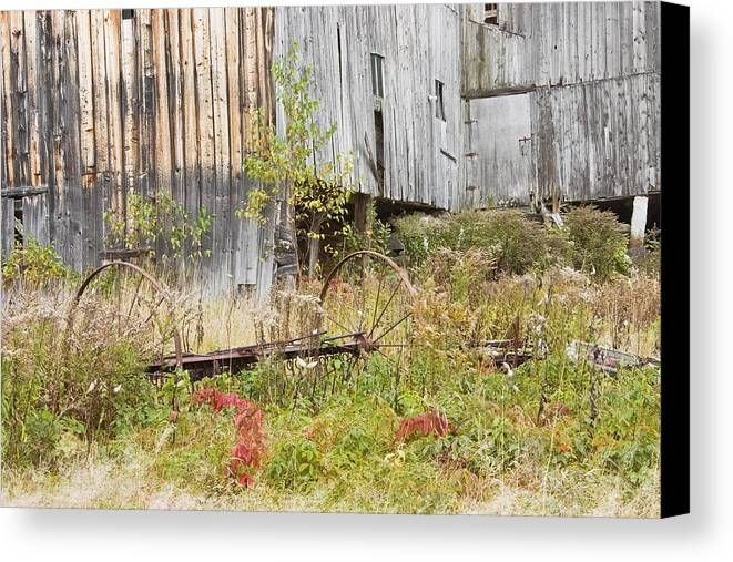 Building; Old; Old Building; Abandoned; Run-down; Architecture; Shed; Shack; Grunge; Structure; Window; Fall; Autumn; Weathered; Overgrown; Weeds; Country; Building Exterior; Rural; Rustic; Grass; Overcast; Wood; Siding; Maine; New England; Old Barn In Maine; Maine Barns; Old Barn; Weather Wood; Wooden Siding; Fall Foliage; Abandoned Building; Rustic; Rusctic Building; Maine Countryside; Country Living; Weathered Building; New England Barn Canvas Print featuring the photograph Old Barn In Fall Maine by Keith Webber Jr