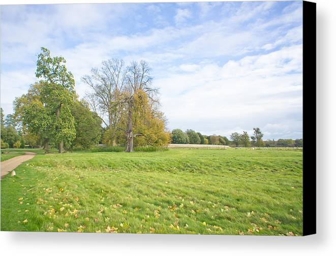 Autumn Canvas Print featuring the photograph Rural Scene by Tom Gowanlock