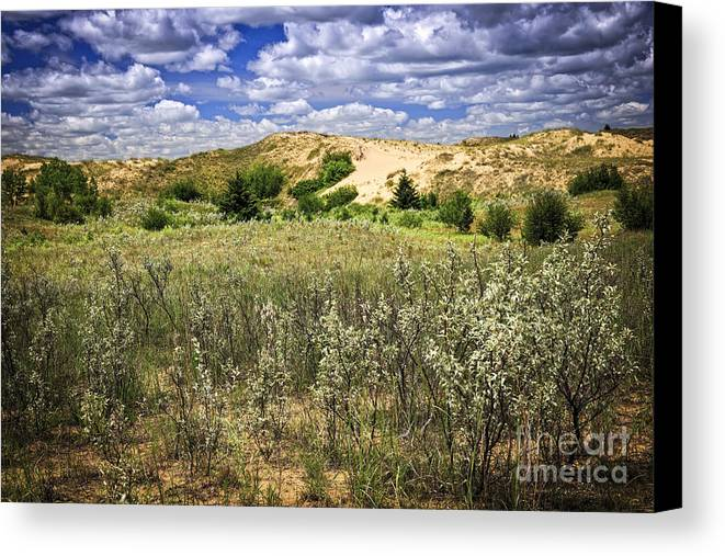 Sand Canvas Print featuring the photograph Sand Dunes In Manitoba by Elena Elisseeva