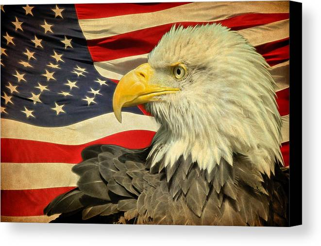 Bald Eagle Canvas Print featuring the photograph The American Eagle by Steve McKinzie