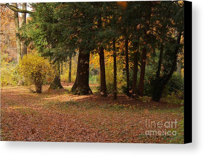 Foliage Canvas Print featuring the photograph Autumn by Angela Doelling AD DESIGN Photo and PhotoArt