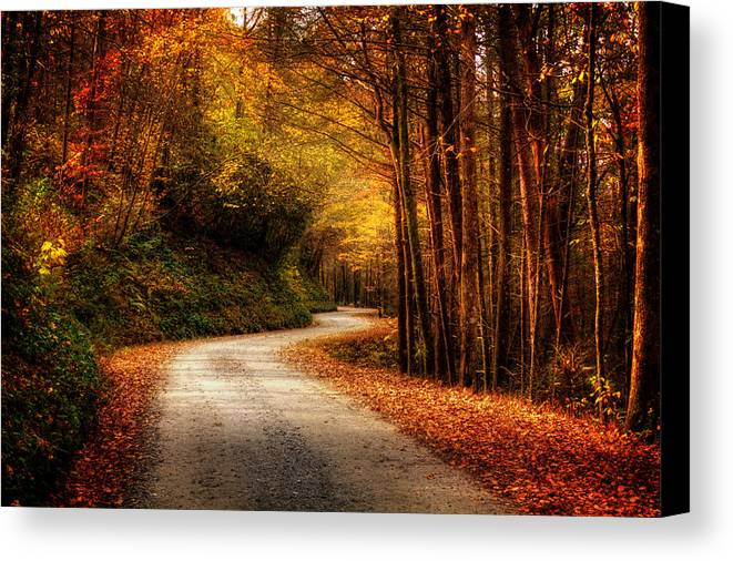Dirt Road Canvas Print featuring the photograph A Drive In The Mountains Of Western North Carolina by Greg Mimbs