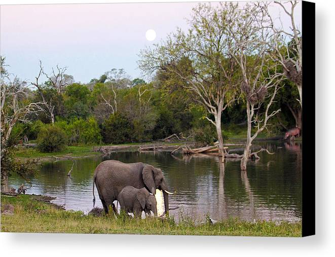 South Canvas Print featuring the photograph A Mother And Child by Evan Peller