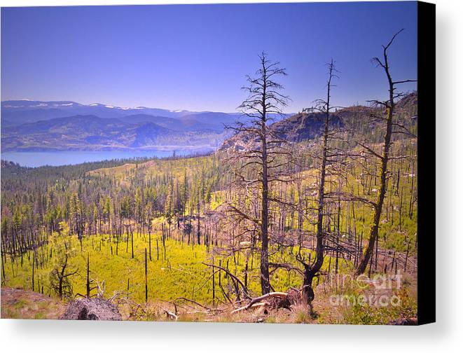 Mountain Canvas Print featuring the photograph A View From Okanagan Mountain by Tara Turner