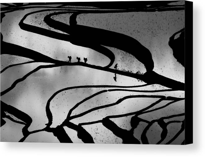 Abstract Canvas Print featuring the photograph Abstract Pattern Bw by Jason KS Leung