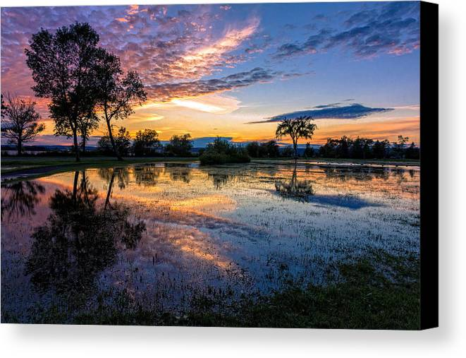 Rain Canvas Print featuring the photograph After The Rains by Mary Amerman