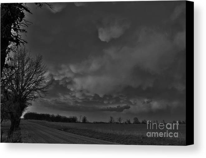 Landscape Canvas Print featuring the photograph After The Storm by Jennifer Churchman