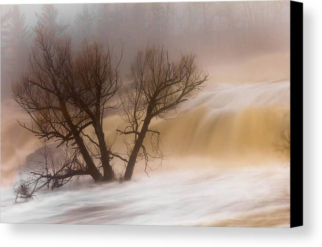 against The Current st. Louis River jay Cooke thomsen Reservoir spring Tree long Exposure spring Melt fog mist nature river mary Amerman Canvas Print featuring the photograph Against The Current by Mary Amerman