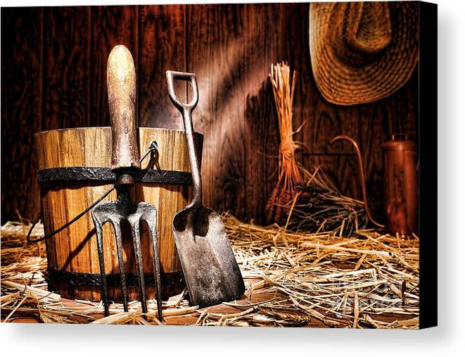 Gardening Canvas Print featuring the photograph Antique Gardening Tools by Olivier Le Queinec