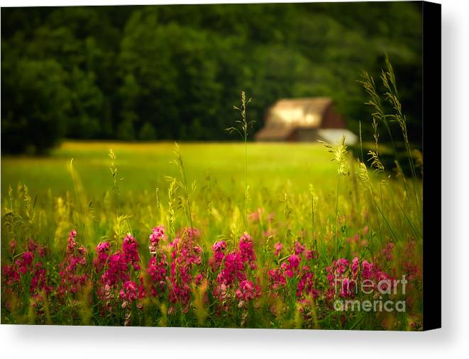 Barn Canvas Print featuring the photograph At A Distance by Todd Bielby