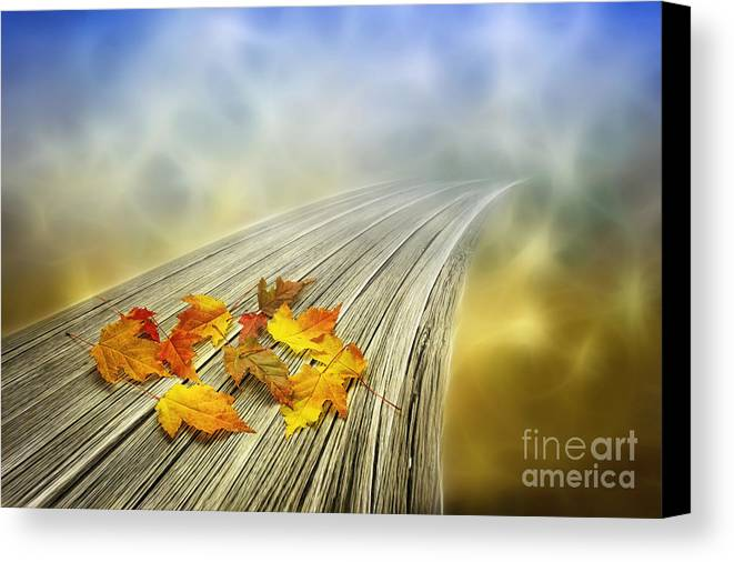 Art Canvas Print featuring the photograph Autumn Bridge by Veikko Suikkanen