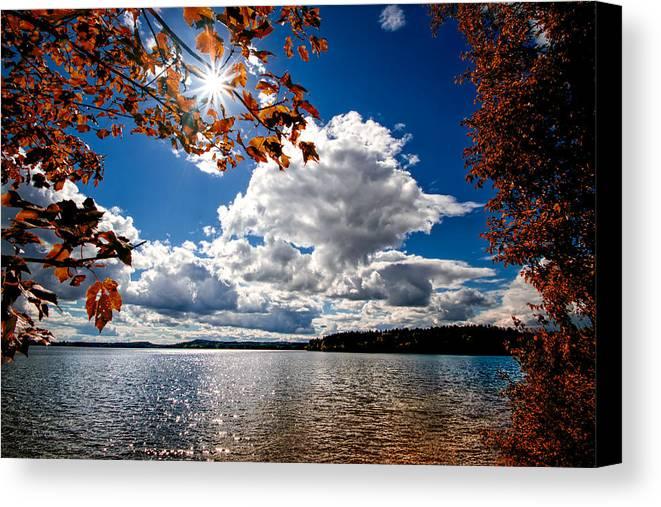 Landscape Canvas Print featuring the photograph Autumn Confidential by Bob Orsillo