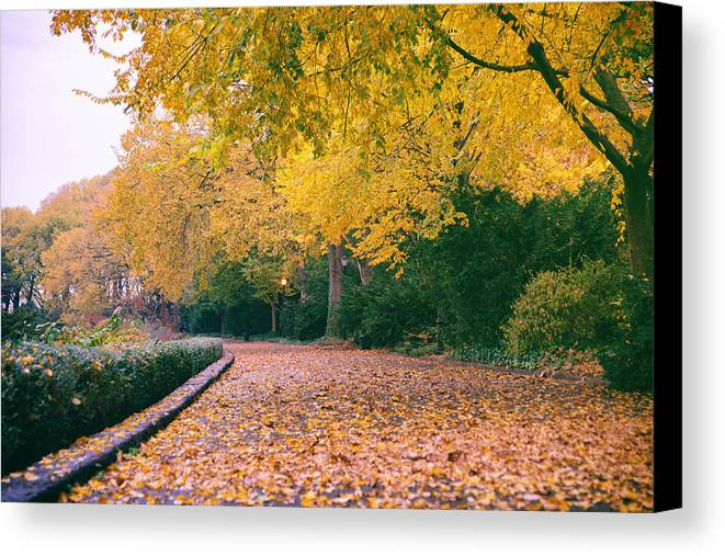 Nyc Canvas Print featuring the photograph Autumn - New York City - Fort Tryon Park by Vivienne Gucwa