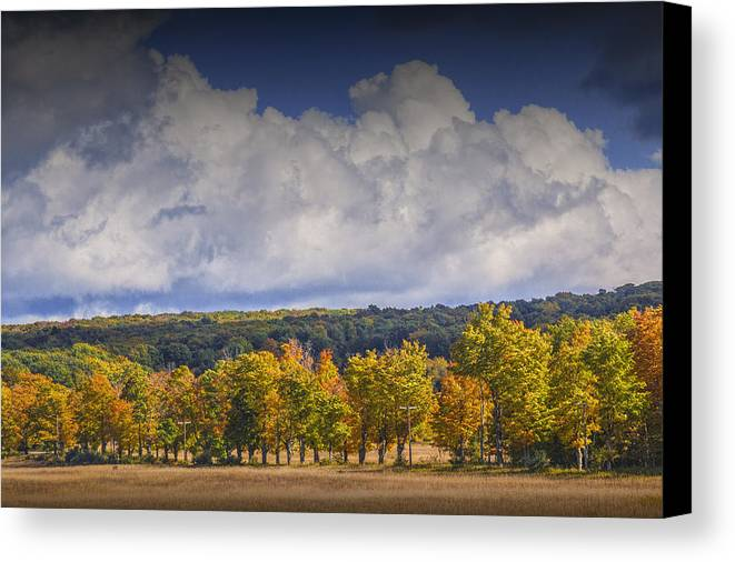 Art Canvas Print featuring the photograph Autumn Trees In A Row by Randall Nyhof