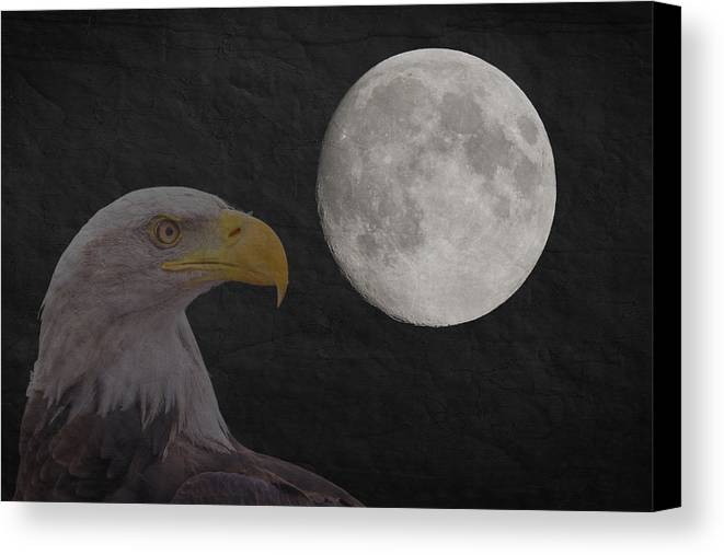 Moon Canvas Print featuring the photograph Bald Eagle With Full Moon - 3 by Chris Smith